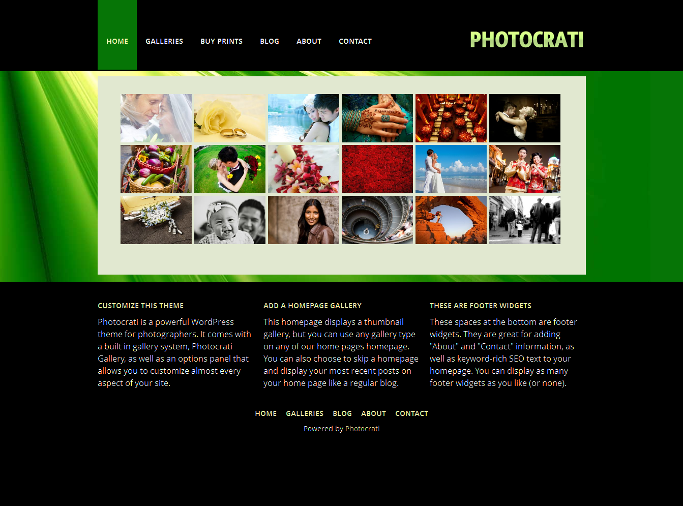 Photocrati Vignette I Photography WordPress Theme - vignette3