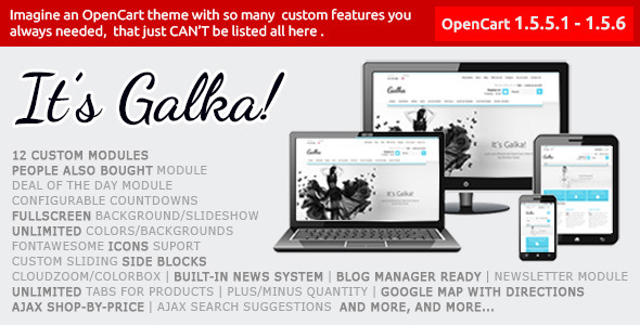 Galka Professional Theme