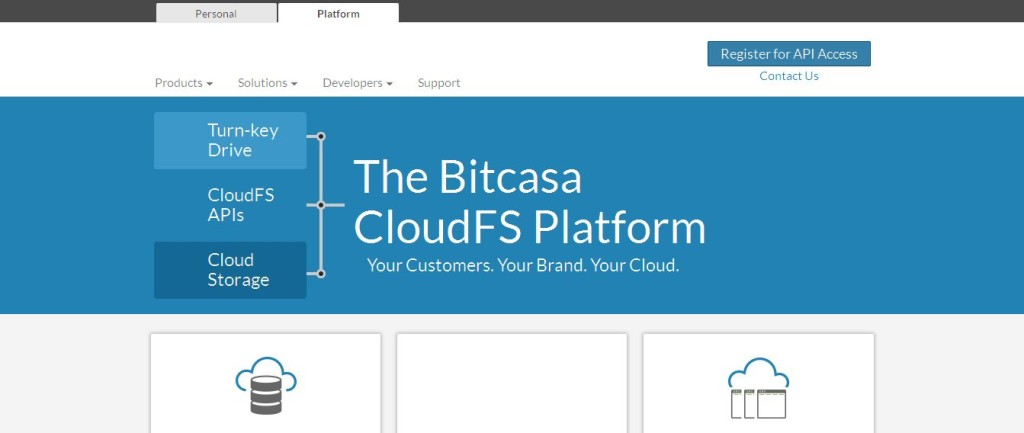 The Bitcasa Platform -- Your Customers_ Your Brand_ Your Cloud