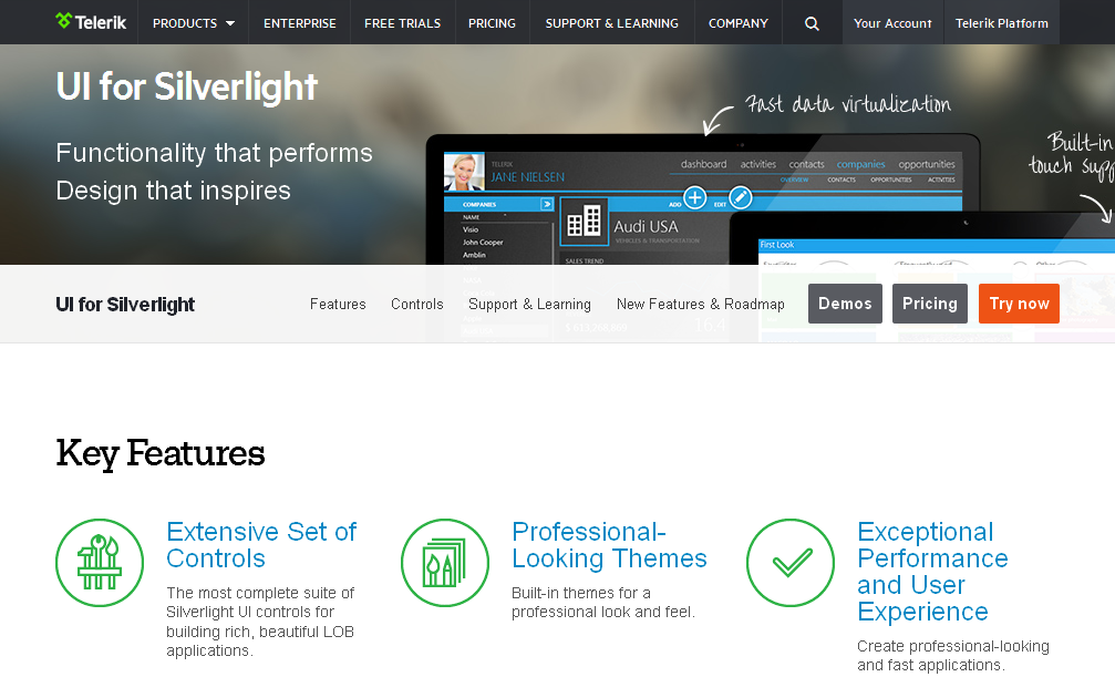 Telerik Silverlight Controls I UI for Silverlight
