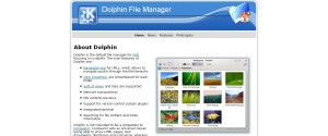 Dolphin File manager free