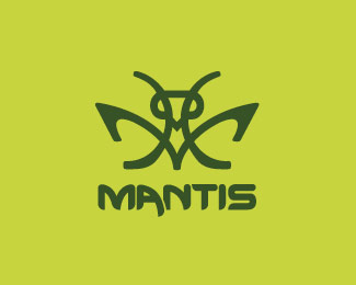 02-insect bug logo Design