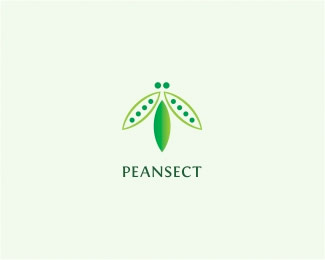 05-insect bug logo Design