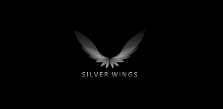 Sequential Type Logo Designs SILVER WINGS