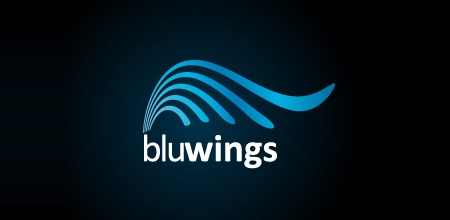 Sequential Type Logo Designs Bluwings