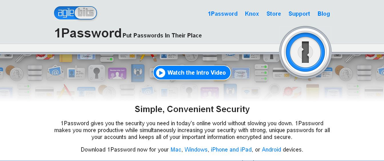 1Password management tool