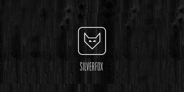 Visually Appealing Fox Logo Design Examples for Inspiration (3)