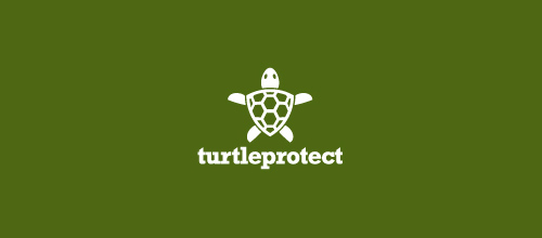 TurtleProtect logo design ideas