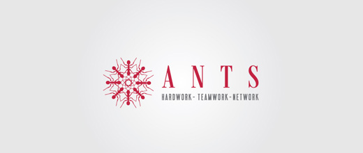 Company red ant logo design ideas