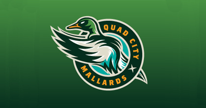 Hockey ducks logo design examples