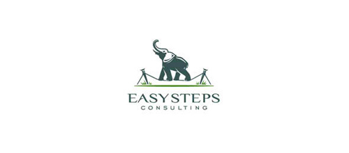 design Easy Steps logo