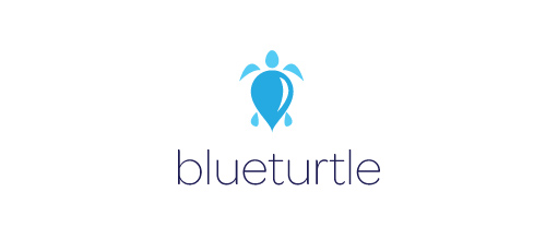 Blue Turtle logo design ideas