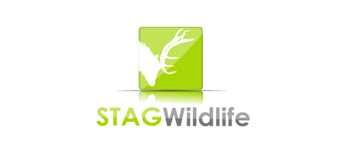 STAG Wlidlife logo design examples