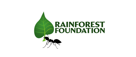 Leaf nature ant logo design ideas
