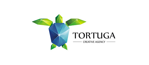 tortuga logo design ideas