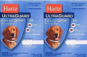 Hartz Ultra guard Flea and Tick Large Dog Collar 26″