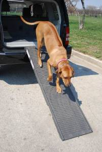 Petstep Pet Folding Ramp