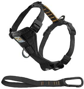 Kurgo Smart Dog Tru-Fit Walking Harness