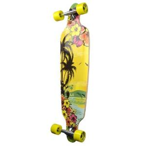 New Graphics Drop-Through Professional Speed Complete Longboard