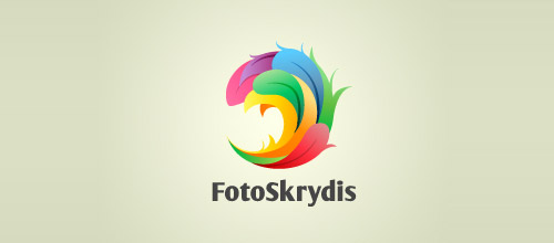 colorful feather foto skrydris logo