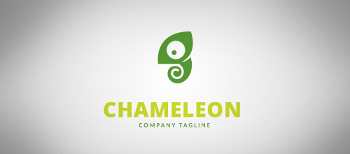 cute chameleon logo design