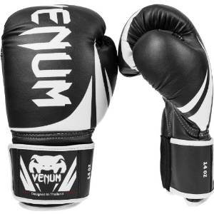 Challenger 2.0 Boxing Gloves from Venum
