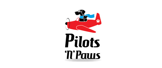 Animal airplane logos design