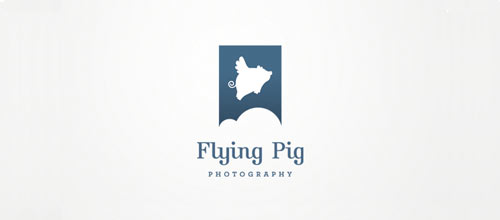Flying Pig Photography logo designs