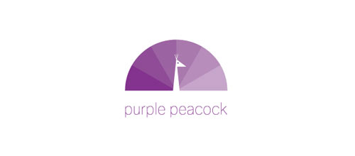 Purple Peacock logo designs