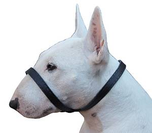 Adjustable Easy Fit Leather Loop Dog Muzzle from Dogs My Love