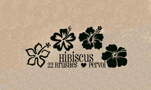 Beautiful free hibiscus Flower brushes
