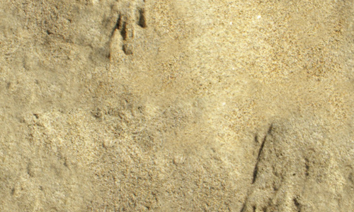 Rough sand seamless texture free